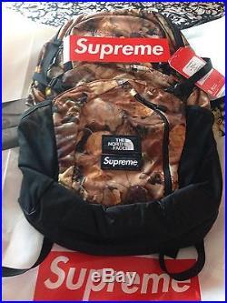 Supreme Backpack (northface) Pocono Brand New In Bag