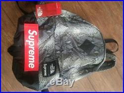 Supreme North Face Snakeskin Lightweight Day Pack Black